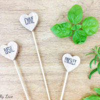 How to make Heart-Shaped Wooden Herb Markers