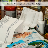 Tips For Prepping For Survival On A Budget - Experimental Homesteader