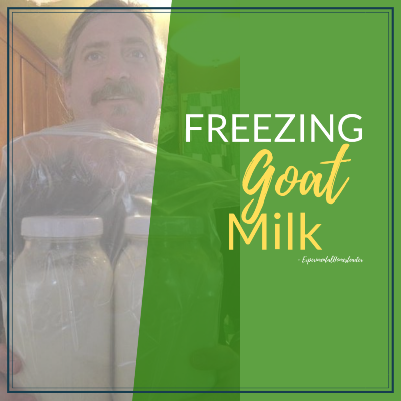 Jeffrey holding frozen jars of goat milk.