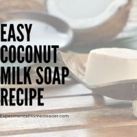 Easy Coconut Milk Soap Recipe
