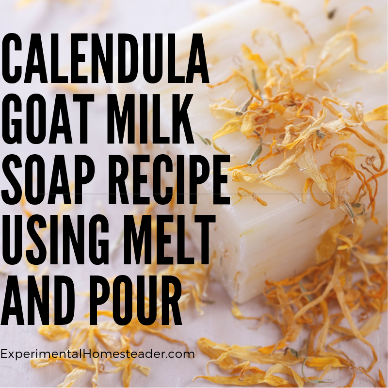 Goat milk soap with calendula flowers.
