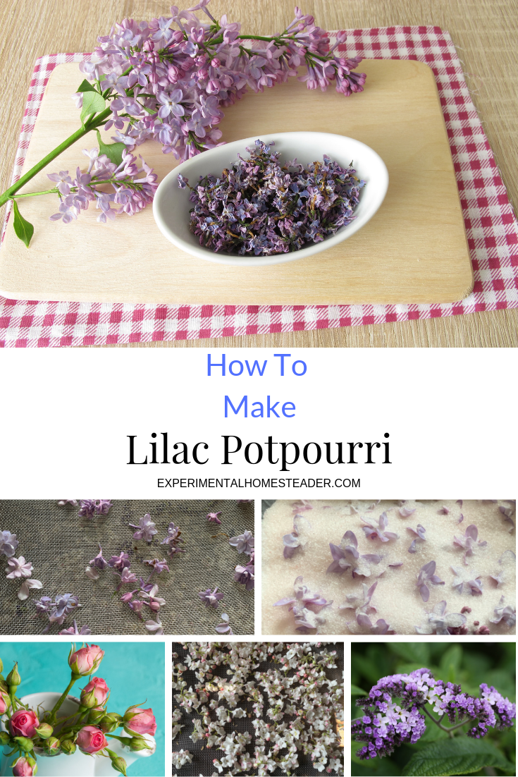 Dried lilac flowers in the top photo. Other flowers used in the potpourri in the bottom photos.