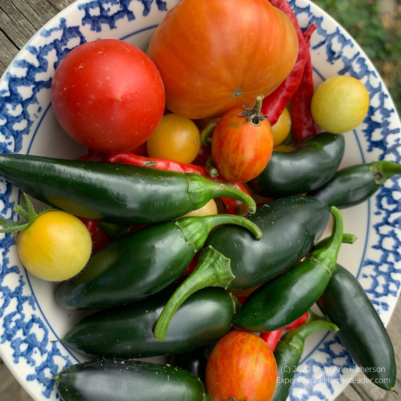 Tomatoes and peppers from our garden.